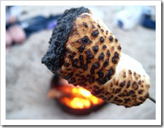 burnt marshmallows