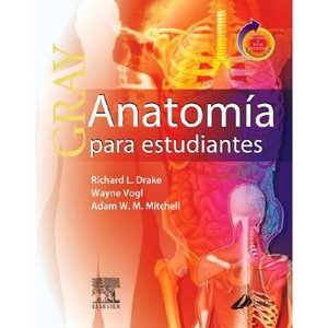 anatoma para estudiantes