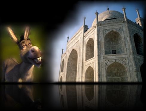 donkey palace Finale