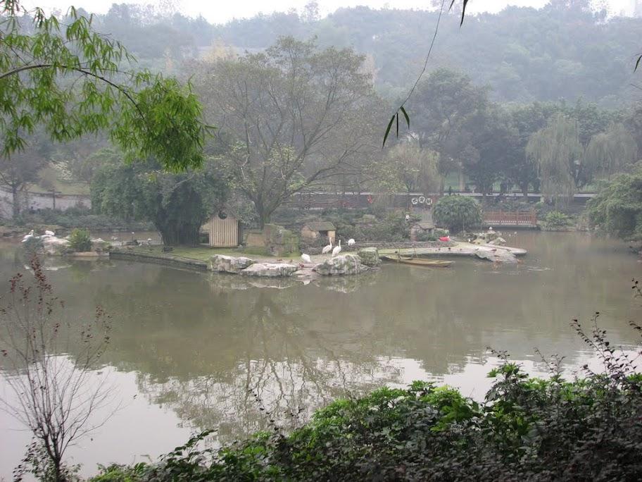 Petite vue du zoo
