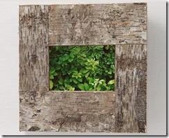 cadre photo en vert