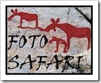 Fotosafari