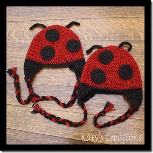 00157.00158 - Lady Bug