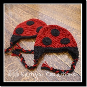 00230.00231 - Ladybug