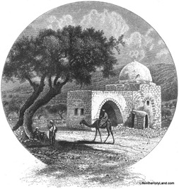 Rachel's Tomb, pp1126