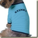 stinky_dog_shirt-p1556169476258156922vfsi_125