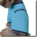 stinky_dog_shirt-p1556169476258156922vfsi_125
