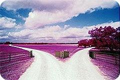 Duas-estradas
