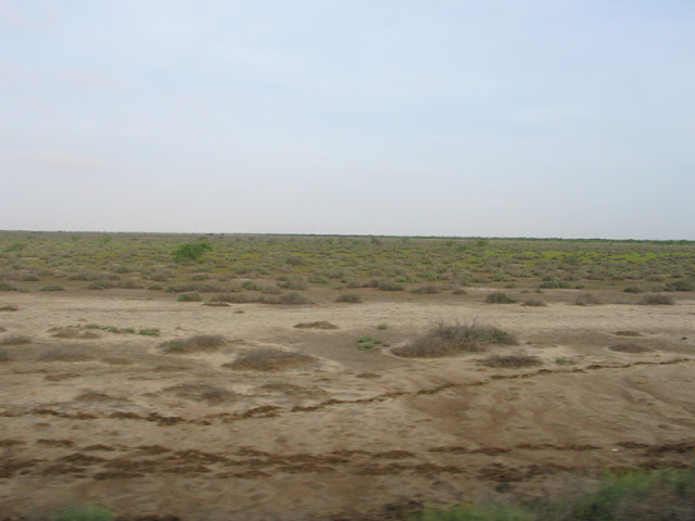 kutch_landscape6.jpg