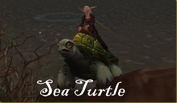 sea_turtle_mount