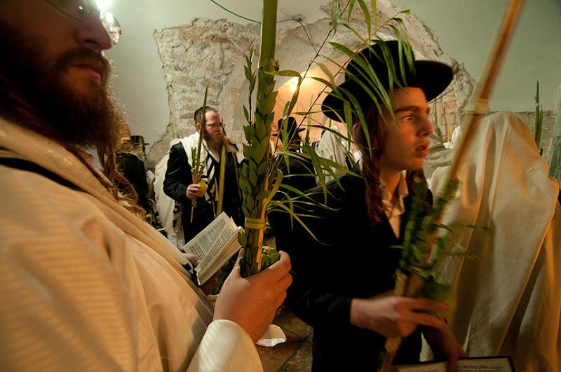 On gathering sticks and misuse of the tongue hoshana rabbah blog