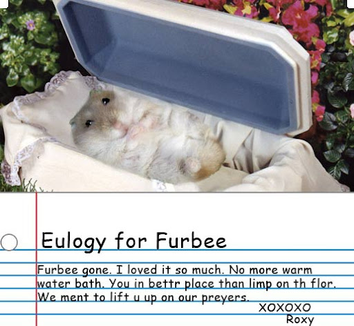 eulogy for a dead hamster