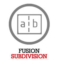 fusion-subdivision