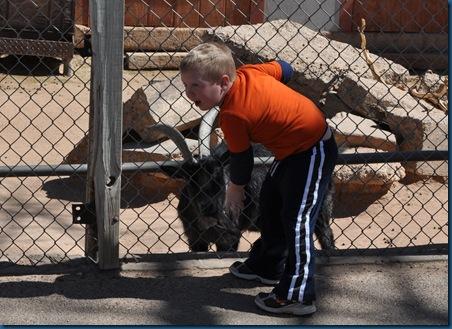 03-15-11 Zoo trip 30