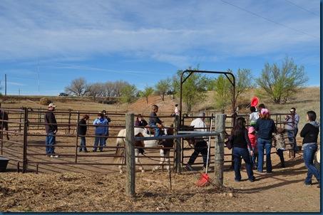 03-31-11 farm visit 64