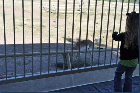 04-28-11 Zoo 014