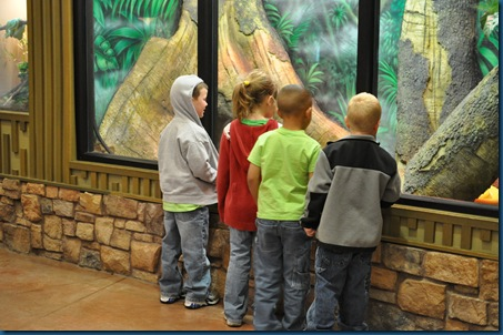 04-28-11 Zoo 012