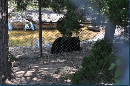 04-28-11 Zoo 070