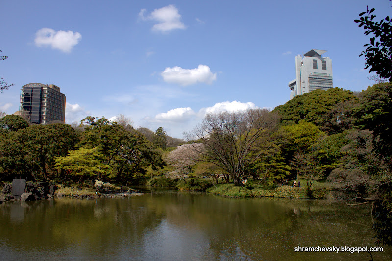 Japan Tokyo Koishikawa Korukaen Gardens Япония Токио Коишикава Корукаен Гарденс Самый Старый Парк Пруд