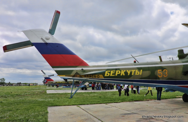 Миль Ми-24 Беркуты
