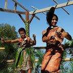 Tonga Tänzer