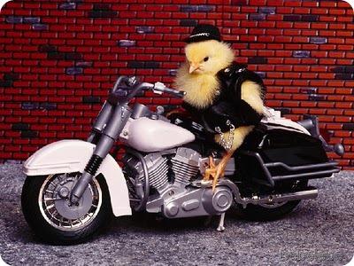 biker_chick