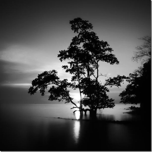 Fotografias em preto e branco do oceano (11)