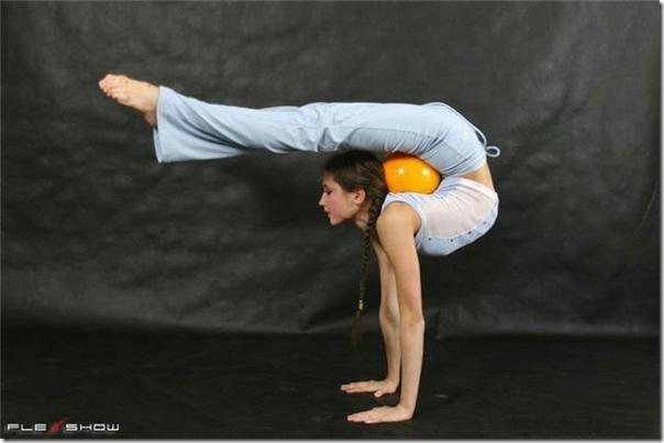 modelos flexiveis (6)