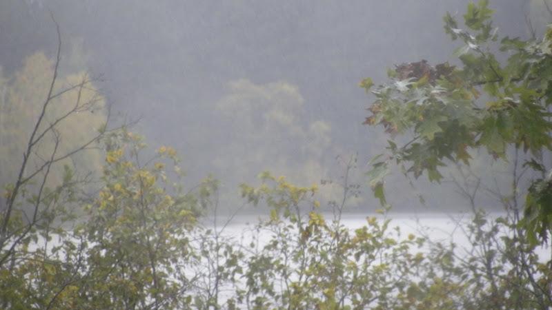 Rain Oct 6 (2)_3591 for Online