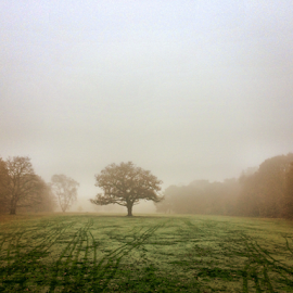 Wimbledon Common Golf Course by Ludwig Wagner - Instagram & Mobile iPhone