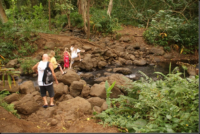 Maunawili hike 118