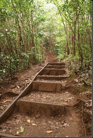 Maunawili hike 145