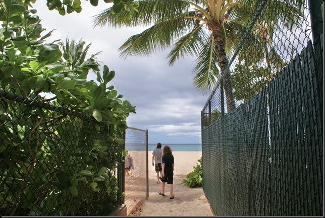 Turtle Beach 006