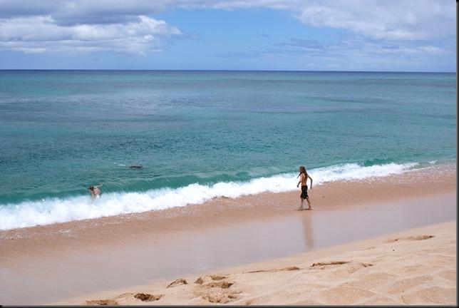Turtle Beach 013