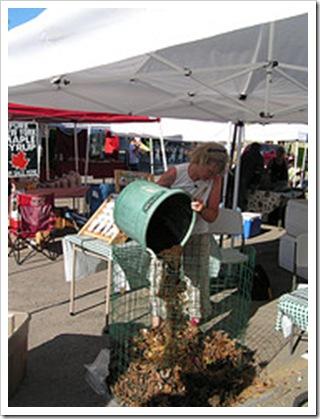 liz simonson composting