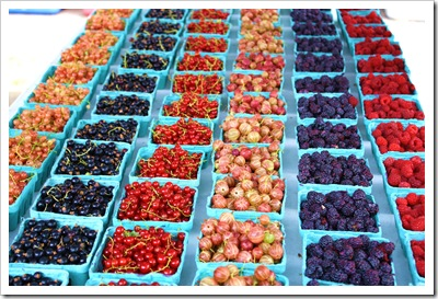 currants, raspberries, gooseberries, ray tousey, rhinebeck farmers market