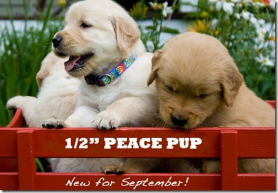 lupine peace puppies