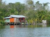 Habitat sur pilotis typique des Bocas