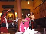 Petite allure de flamenco