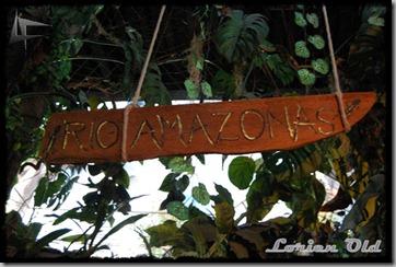 AcuarioZaragoza (22)