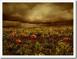 Pumpkin_Patch_Back_Textured_by_SolStock