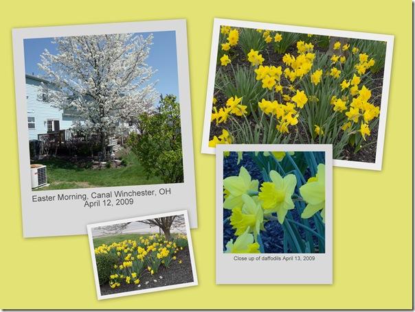 April 19 2009 Easter Trip1