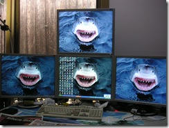 This great white shark has its eyes on you for a snack! (Click to enlarge.)