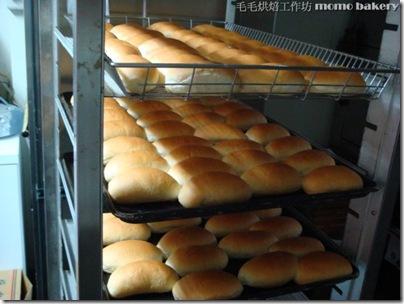 烘焙丙級麵包_37
