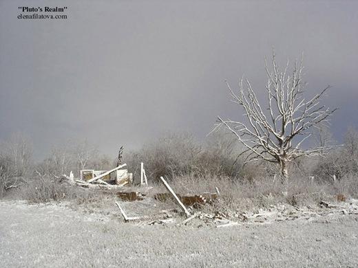 spring2008.1