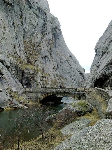 Viaje a Asturias 02012011189