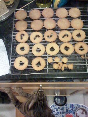 Dizzy_Cookies.JPG