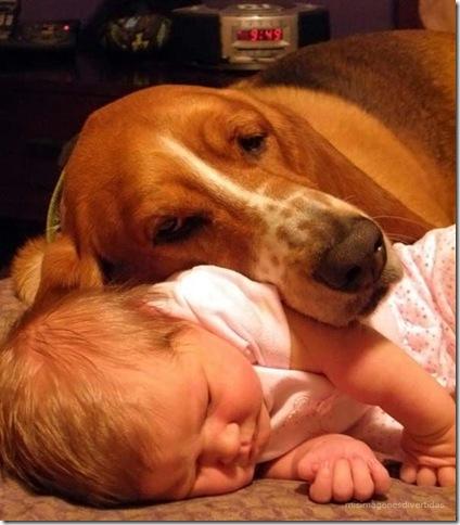 1 - niños con perros misimagenesdivertidas  (5)