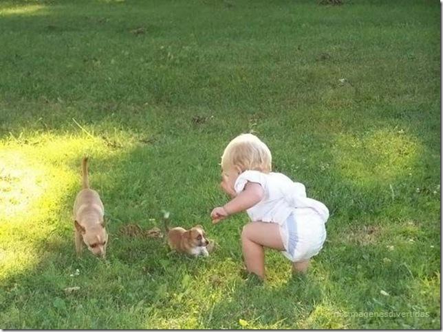 1 - niños con perros misimagenesdivertidas  (11)