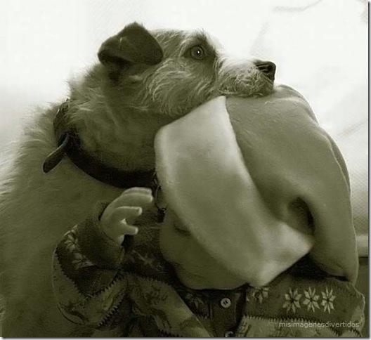1 - niños con perros misimagenesdivertidas  (14)